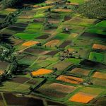 Госгеокадастр саботирует земельные аукционы