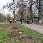 Коммунальщики выступят субподрядчиками на озеленении Запорожья