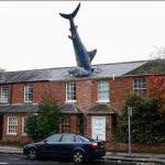 Строительные курьезы: как акула врезалась в крышу дома. Фото