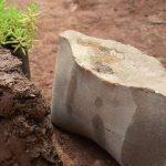 В строительстве будут использовать биоразлагаемые кирпичи из древесного угля
