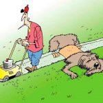 На рынок вышли новые профессиональные газонокосилочные тракторы