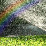 Киев уменьшит расход питьевой воды на полив зеленых зон