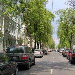 На Пушкинской отремонтируют 1 км дороги