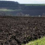 Мораторий на продажу земли могут снять