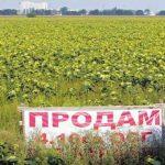 Мораторий по продаже земли могут не отменить