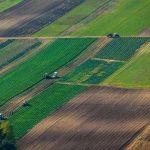 Арендаторы получат преимущественное право на покупку земли