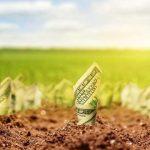 Стоимость земли после снятия моратория удвоится