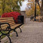 У скамеек в парках будут спинки