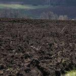 За и против отмены моратория на продажу земель