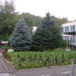 В Запорожье отремонтируют садик