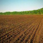 Правительство поможет купить землю