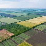 У земельной реформы уже 11 законопроектов