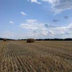 Доступ к кредитам на покупку земли увеличат
