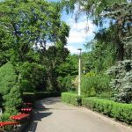 Киев ударился в эко-культуру