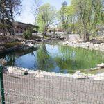Третья очередь зоопарка обойдется в 800 млн. грн.