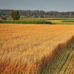 Закон о земле нужен для избежания дефолта