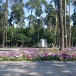 Благоустройство в парке Партизанской славы отремонтируют