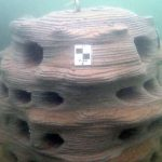 Исследователи напечатали бетонные рифы