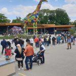 Киевский зоопарк будут ремонтировать пять лет