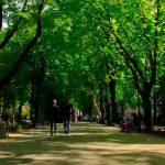 Как строилась Одесса: Приморский бульвар. Видео.  3-я серия