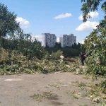 Суд запретил строительство в Протасовом Яру