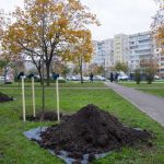 Киев присоединился к празднику озеленения