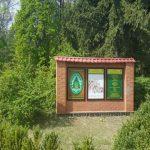 Под Киевом из незаконного пользования изъяли 1,5 га леса