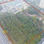 В киевском парке разрешили построить жилье