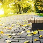 Во львовских парках появятся эксклюзивные скамейки