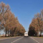 На тендере по ремонту львовских дорог сэкономили 95%