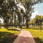 Зеленые зоны постепенно заполняют весь Киев
