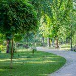 Территория зеленых зон в Киеве растет