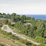 В Киеве создадут более 3 га озелененных территорий