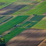 Нотариусы будут проверять покупателей земли