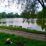 Возле озера Вера обустроят зону отдыха